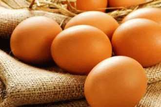 Куриные яйца во сне — к чему снится много куриных яиц?