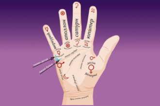 Значение линий на руке в хиромантии — разъяснения и фото