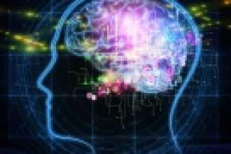 Узнайте на полную ли вы используете свой мозг