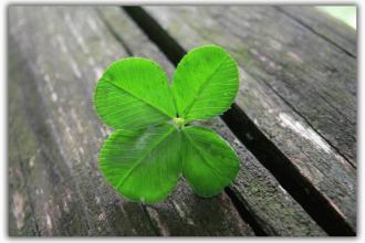 Как самостоятельно читать заговор на удачу в жизни