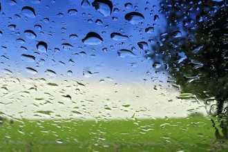 Приметы к дождю расскажут о предстоящем ненастье