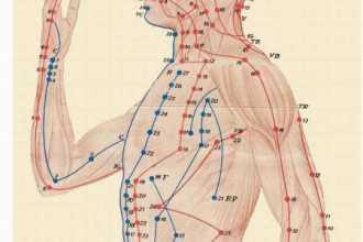 Энергетические меридианы тела человека: подробная карта и описание