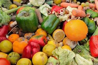 Сны с овощами — как правильно толковать по популярным сонникам