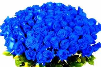 Приснился синий цвет — толкование по различным сонникам