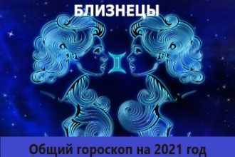 Общий гороскоп Близнецов на 2021 год