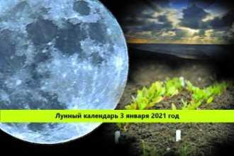 Лунный календарь — 3 января 2021 года