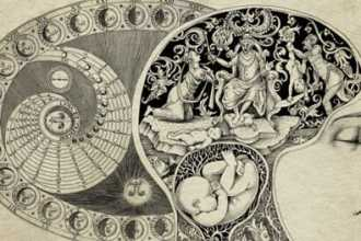 Френология — наука или обман, история развития