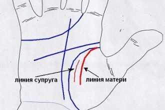 О чём сможет рассказать линия влияния на руке
