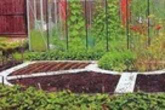 Поле, сад, огород — заговоры