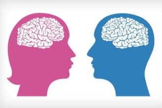 А у вас мужской или женский мозг?