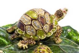 Какое значение имеет черепаха по фен шуй: история и мифы