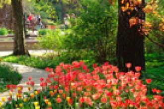 Календарь цветовода на апрель