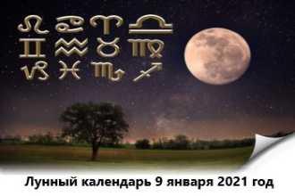 Лунный календарь — 9 января 2021 года