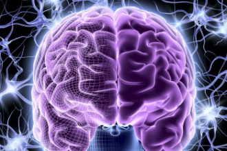 Используете ли вы потенциал своего мозга на всю?