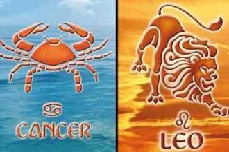 Рак и Лев: совместимость знаков зодиака в любви и браке