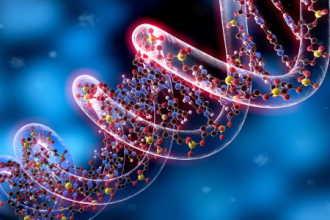 Из каких цветов состоит ваш ДНК?