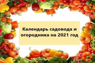 Календарь садовода и огородника на 2021 год