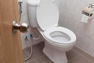 Что может рассказать сон про туалет — нюансы расшифровки
