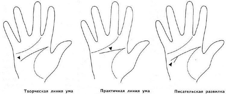 Линии ума на руке - их значение в хиромантии