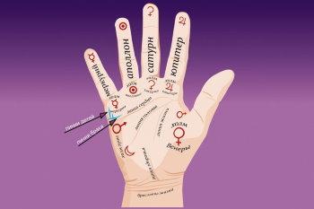 Значение линий на руке в хиромантии - разъяснения и фото