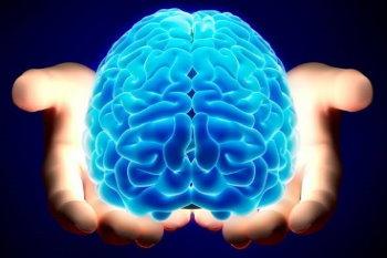 Какое из полушарий мозга у вас больше развито