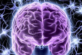 потенциал вашего мозга