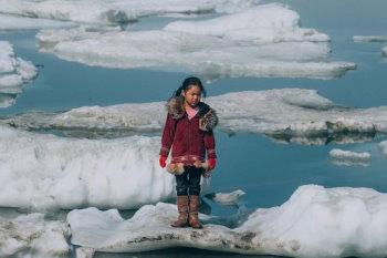 Сможете ли вы выжить в Арктике?